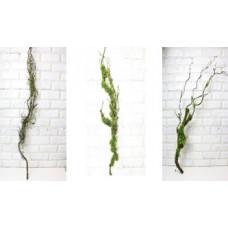 Коряга ветка мох