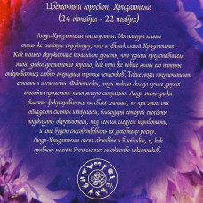 """Пакет для цветов 12*10 """"Хризантема"""" индиго 10шт"""