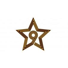 """Наклейка ПВХ 320*170мм """"Звезда"""" с европодвесом 9-99-0005"""