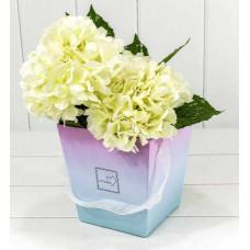 Коробка для цветов Flowers, Градиент Розовый/Голубой, 17*17*18 см, 1 шт.