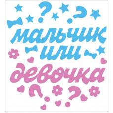 """Наклейка оформительская """"Мальчик или девочка?"""", 1 шт."""