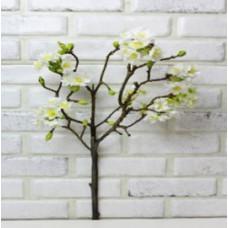 Яблоня ветка бел 70см